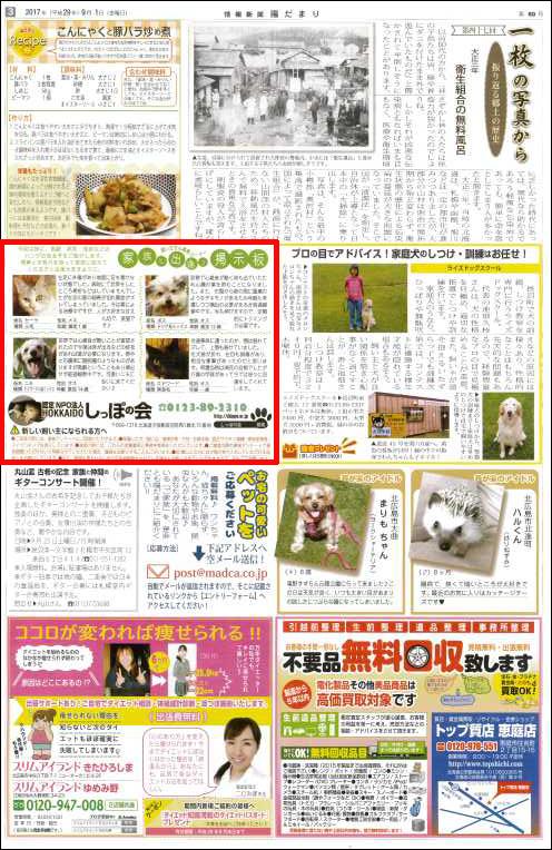 2017_9_1%20情報新聞「陽だまり」sippo.jpg