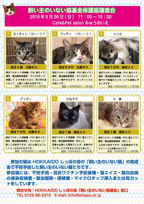 5.26参加猫エントリー表s.jpg