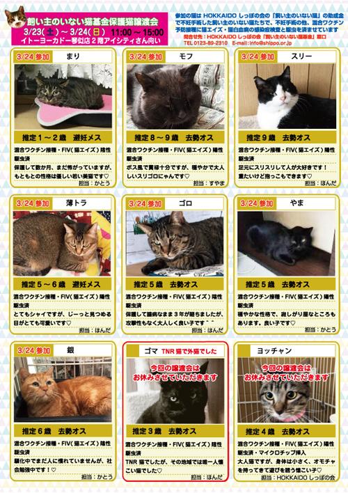 参加猫エントリー表hp.jpg
