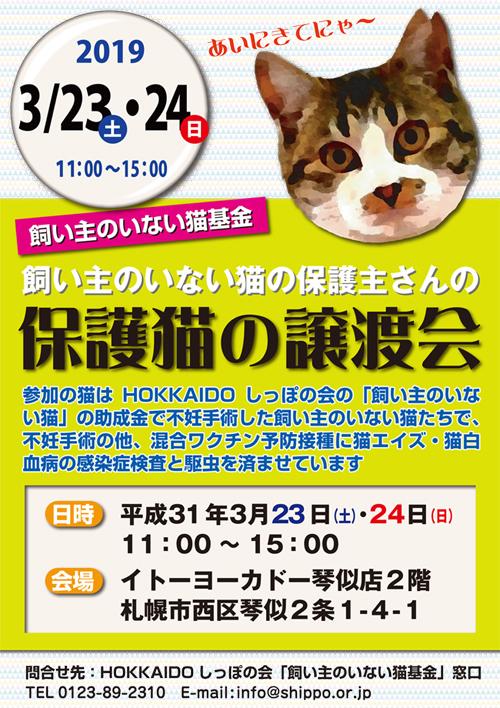 猫基金譲渡会3.23.24.jpg