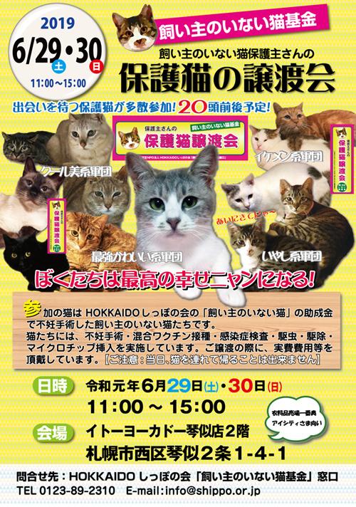 猫基金譲渡会6.29.30hps.jpg