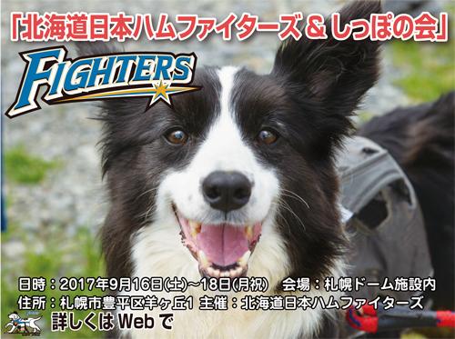 fighters-s.jpg