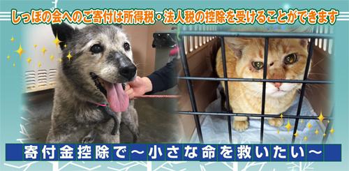 kifukinkoujyo2s.jpg