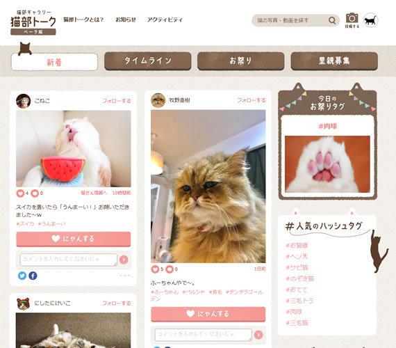 nekobutalk_image2.jpg