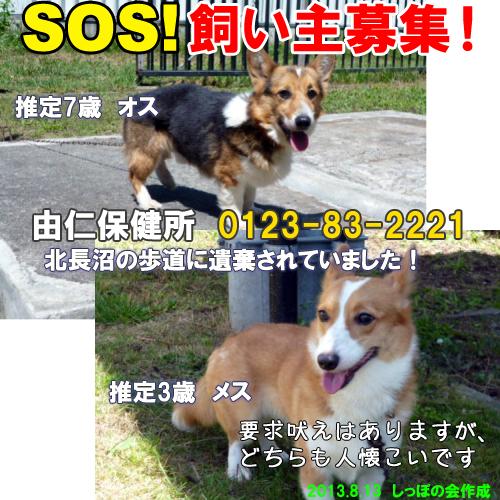 yuni8.13.jpg