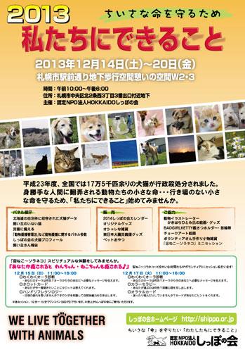 2013dekirukotos.jpg