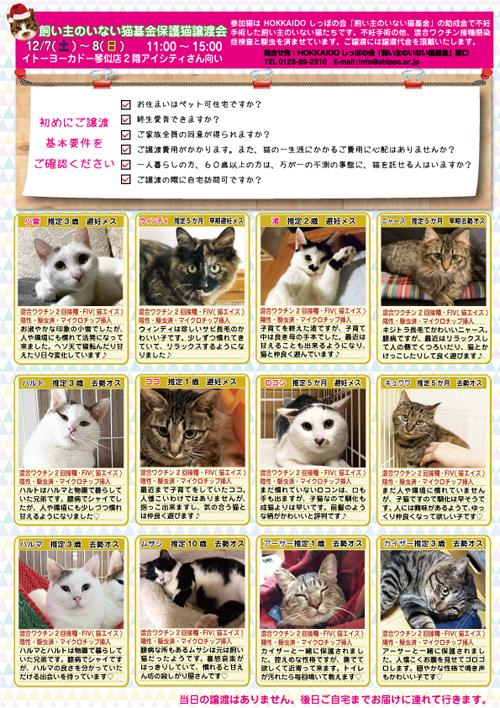 2019.12.7.8参加猫表ketteis.jpg