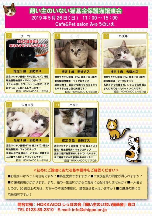 5.26参加猫エントリー表2s.jpg