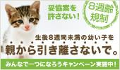 8syu_b_side_M3.jpg