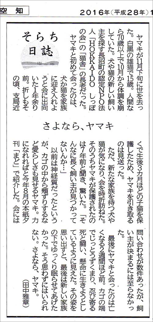 ヤマキの記事.jpg