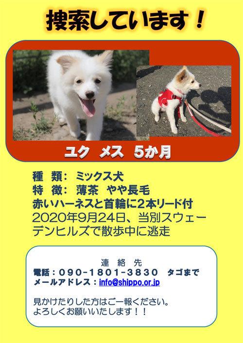 ユクちゃん捜索ポスター-2s.jpg
