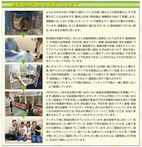 別冊2-3P_ds.jpg