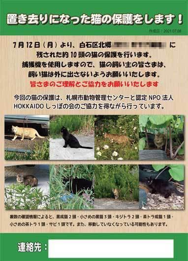 北郷猫チラシ.jpg
