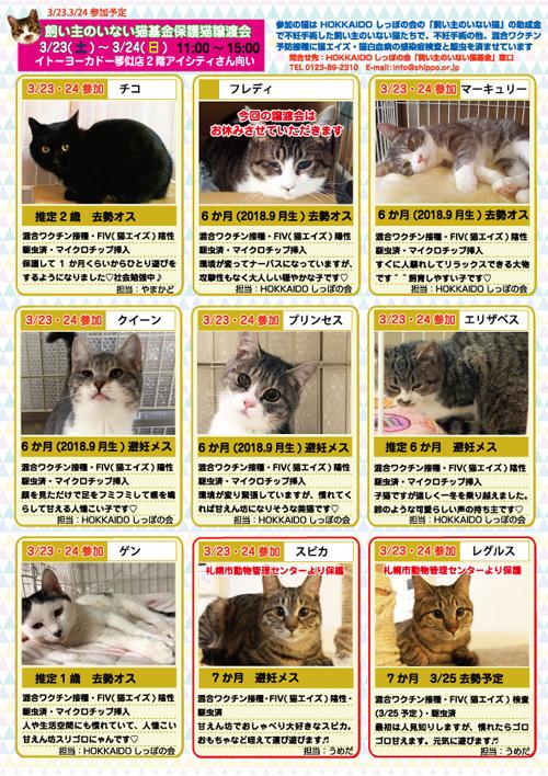 参加猫エントリー表2hp.jpg