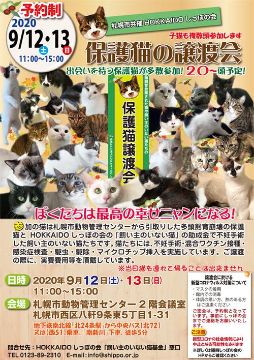 札幌市共催譲渡会2020.9.12s.jpg