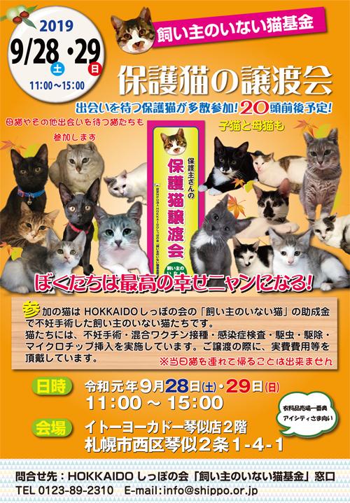 猫基金譲渡会2019.09.28s.jpg