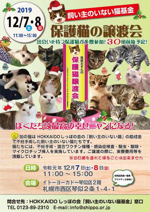 猫基金譲渡会2019.12.7s500.jpg