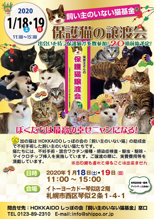 猫基金譲渡会2020.1.18.19s.jpg