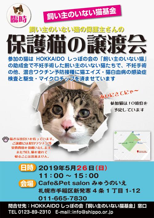 猫基金譲渡会5.26s.jpg
