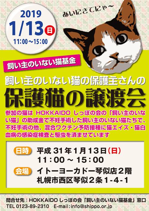 猫基金譲渡会s.jpg