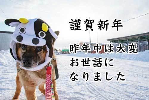 謹賀新年s.jpg