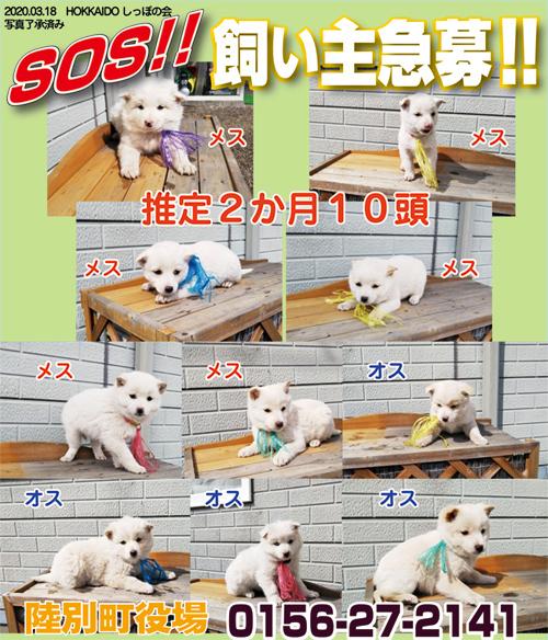 3.18陸別s.jpg