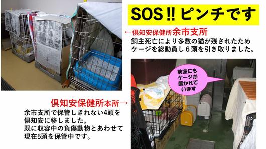 SOSs.png