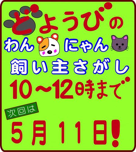 doyoubibana-803f8.jpg