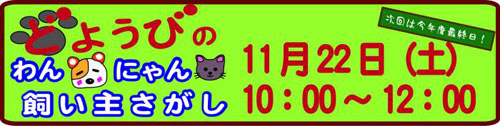 doyoubibana-d444c.jpg