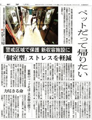 fukusima2.jpg
