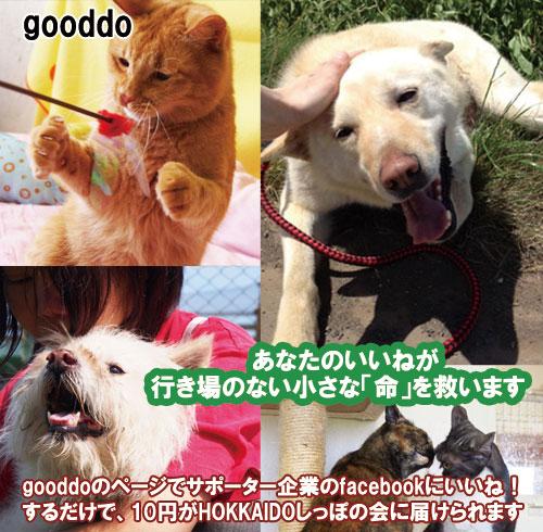 gooddo.jpg