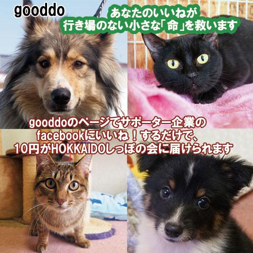 gooddo6.jpg