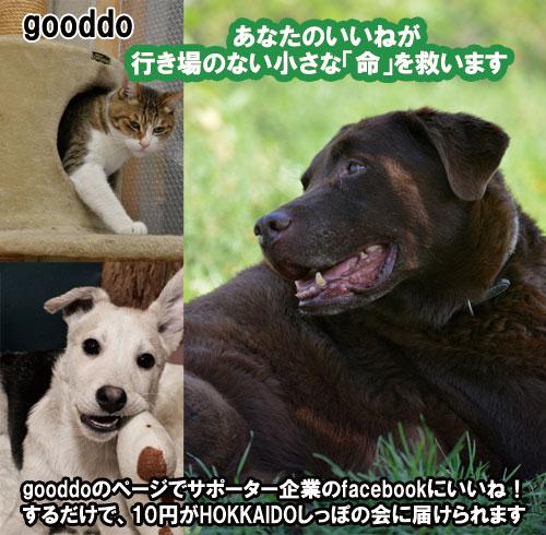 gooddos11.jpg