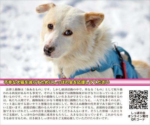 kifukinkoujyo1s.jpg