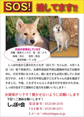 komugimira3.jpg