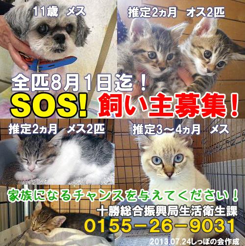 obihiro7.24.jpg