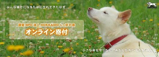 onlinekifu-top修正.jpg