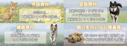 onlinekifu2.jpg
