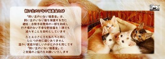 onlinekifu4.jpg