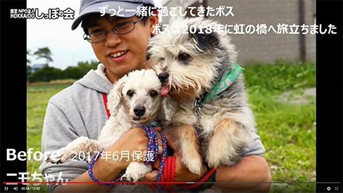 wagaichi2.jpg
